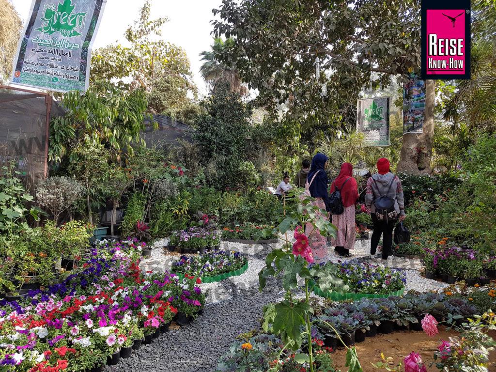 Junge Besucherinnen bestaunen in der Pflanzenausstellung im botanischen Garten Kairo